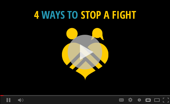 video-preview-4-ways-to-stop-a-fight